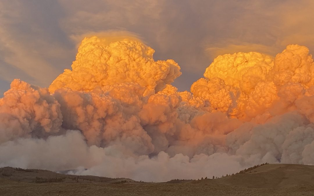 Incendios forestales de récord en Colorado y California