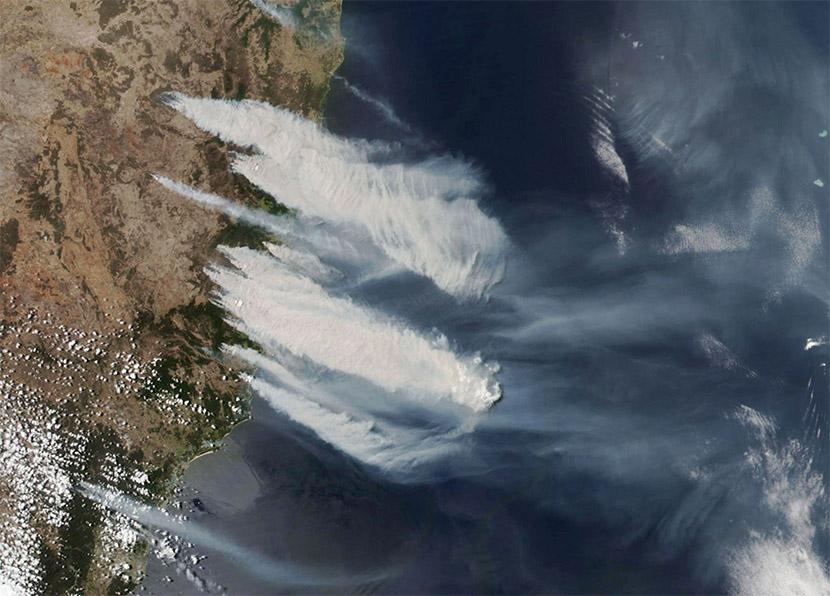 Terribles incendios forestales en Nueva Gales del Sur, Australia